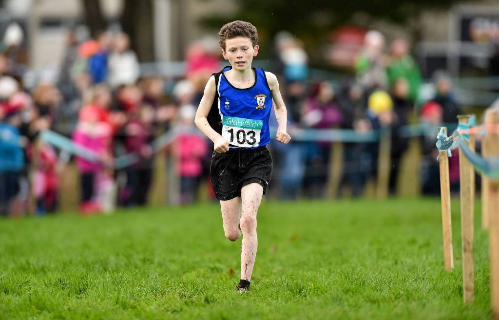 Sean Allen at Irish Cross Country Championships (Dungarvan, December 2015)